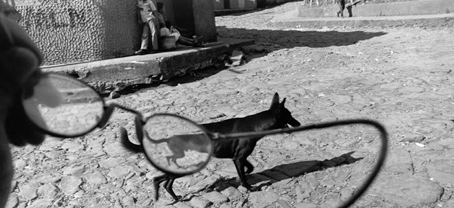 Ларри Тауэлл (Larry Towell)